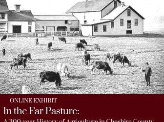 Online Exhibit 1: In the Far Pasture